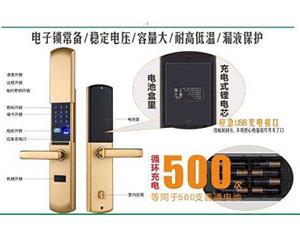 锂电池组 -best365手机官方网站_bet36体育在线「网上娱乐欢迎您」
